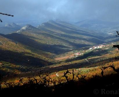 Guía-de-Guadalupe-Ruta-del-Onceno-NGG-3403